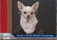 Chief Justice Ginsburg